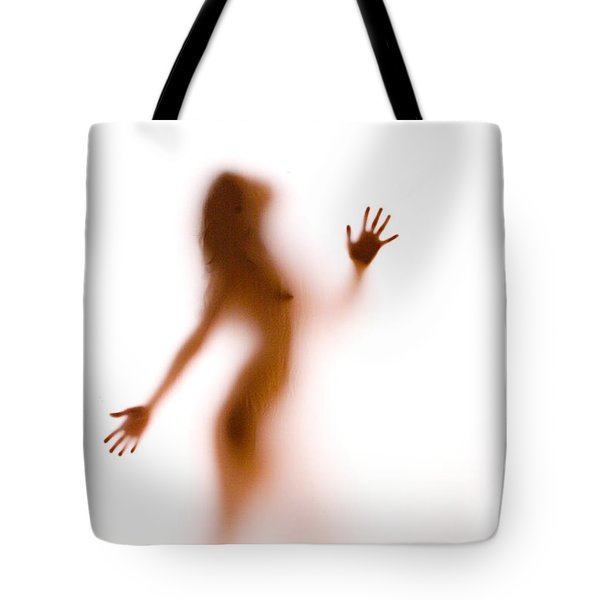 Silhouette 27 Tote Bag by Michael Fryd