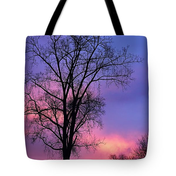 Tote Bag featuring the photograph Silhouette At Dawn by Larry Ricker