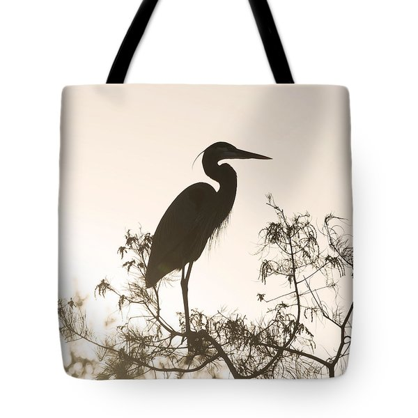 Tote Bag featuring the photograph Silhouette In The Sunset by Sally Sperry