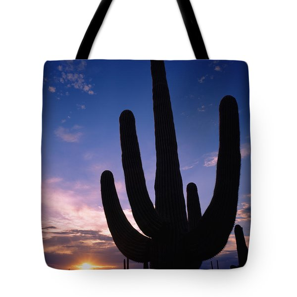 Silhouette Of A Cactus, Four Peaks Tote Bag