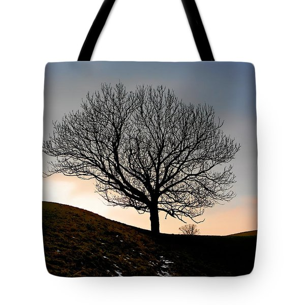 Silhouette Of A Tree On A Winter Day Tote Bag by Christine Till