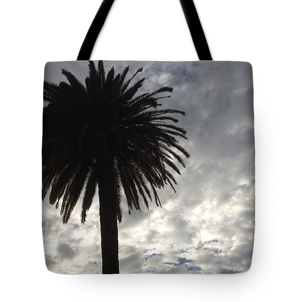 Tote Bag featuring the photograph Silhouette Solo Palm  by Nora Boghossian