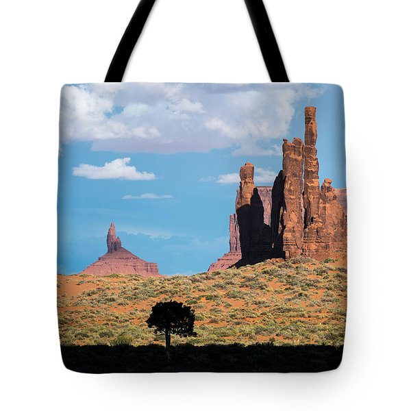 Silhouetted Tree At Monument Valley Tote Bag