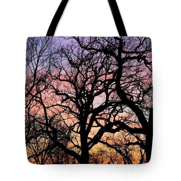 Tote Bag featuring the photograph Silhouettes At Sunset by Chris Berry