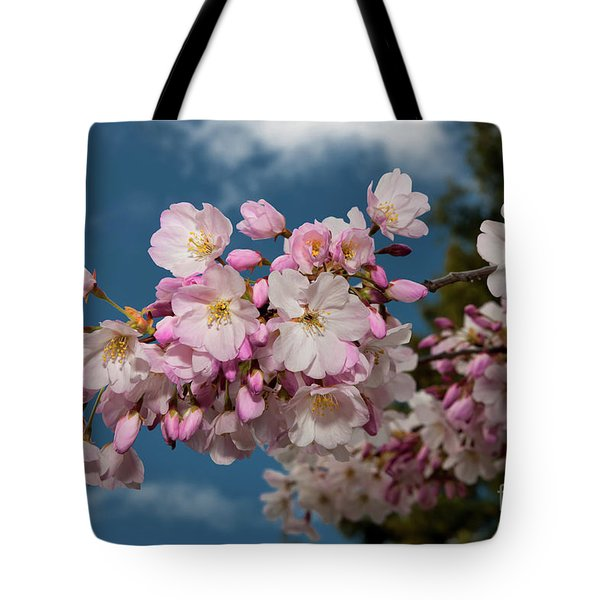 Silicon Valley Cherry Blossoms Tote Bag