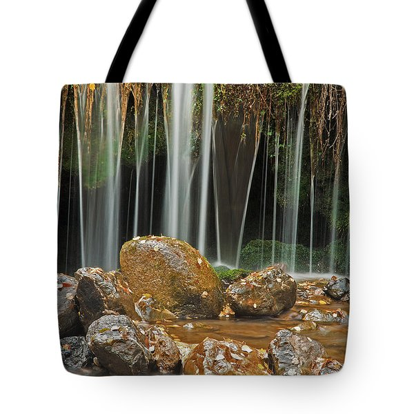 Silky Falls Tote Bag