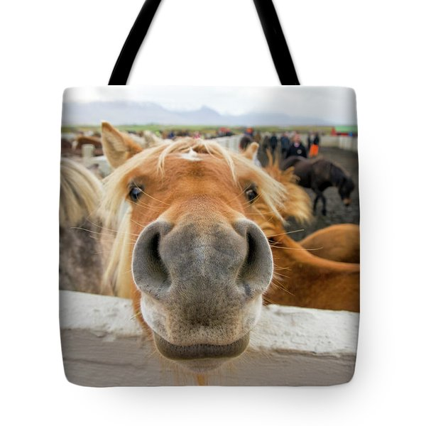 Silly Icelandic Horse Tote Bag