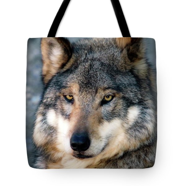 Silly Sancho Tote Bag