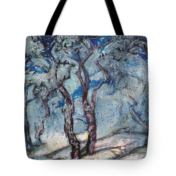 Silver Beach Tote Bag by Sergey Ignatenko