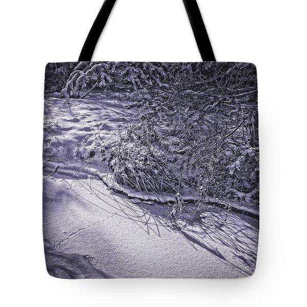 Silver Brook In Winter Tote Bag