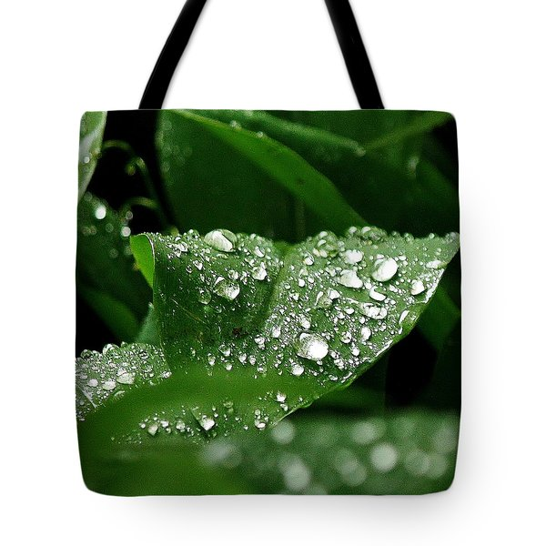 Silver Drops Of Spring Tote Bag