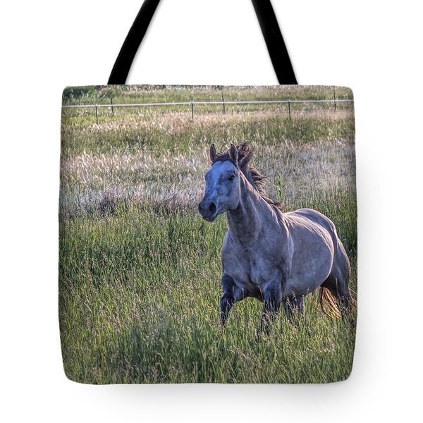 Silver Dun Tote Bag by Alana Thrower