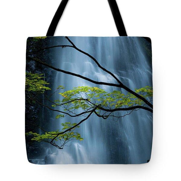 Silver Fall Tote Bag