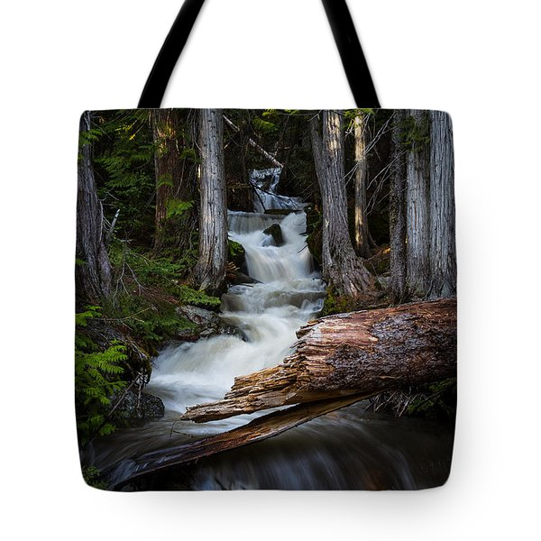 Tote Bag featuring the photograph Silver Falls by Jason Roberts