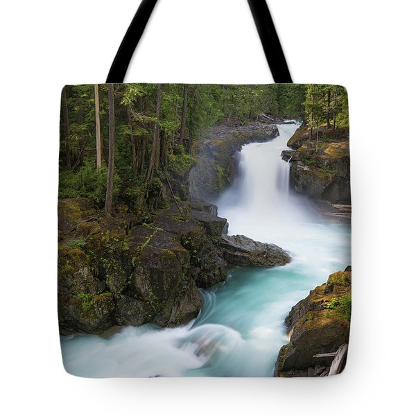 Silver Falls Washington Tote Bag