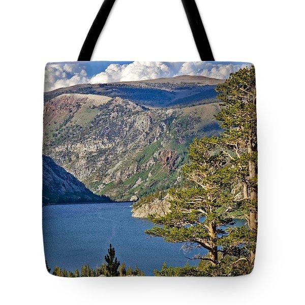 Silver Lake Pines Tote Bag by Chris Brannen