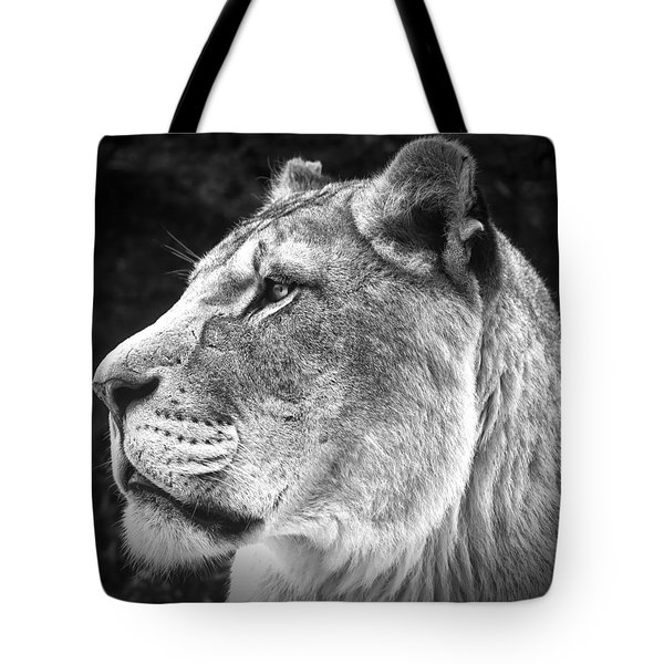 Silver Lioness - Squareformat Tote Bag by Chris Boulton