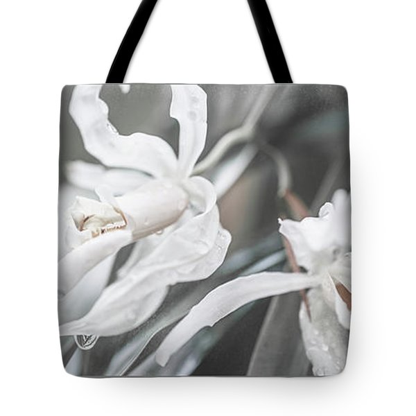 Silver Melody. Triptych Tote Bag
