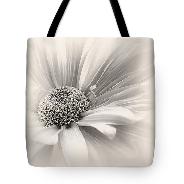 Tote Bag featuring the photograph Silver Mist by Darlene Kwiatkowski