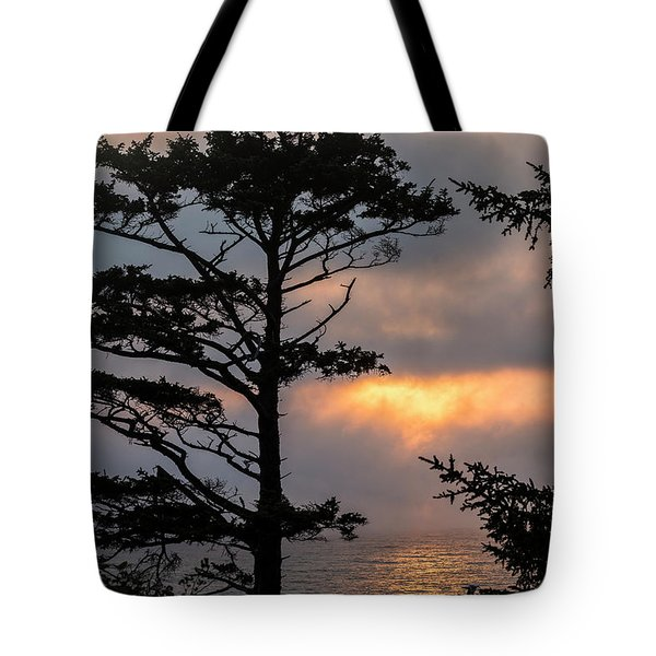 Silver Point Silhouette Tote Bag