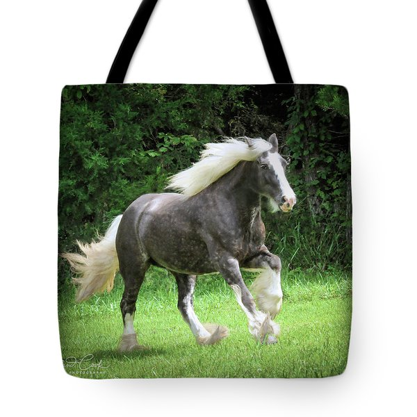 Silver Reign Just Dazzling Tote Bag