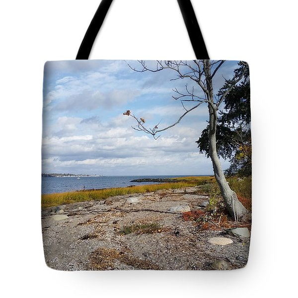 Silver Sands Tote Bag