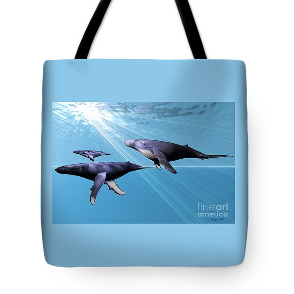 Silver Sea Tote Bag by Corey Ford