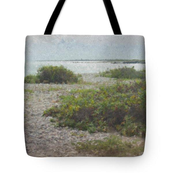 Silver Shoreline Westport Ma Tote Bag