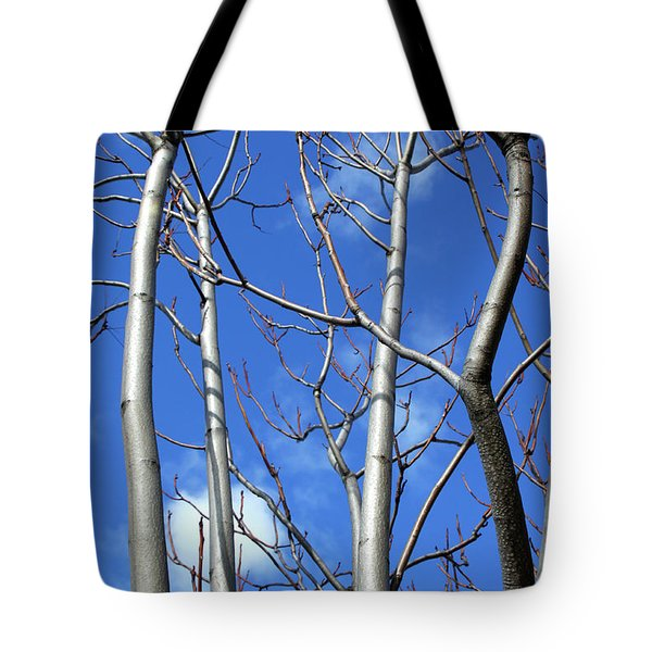 Silver Smooth Tote Bag