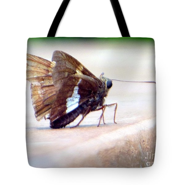 Silver Spotted Skipper Butterfly Tote Bag