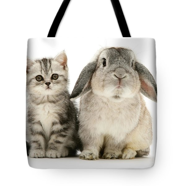 Silver Tabby And Rabby Tote Bag