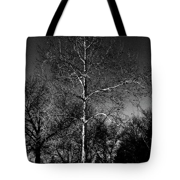 Silver Tree - Monochrome Tote Bag