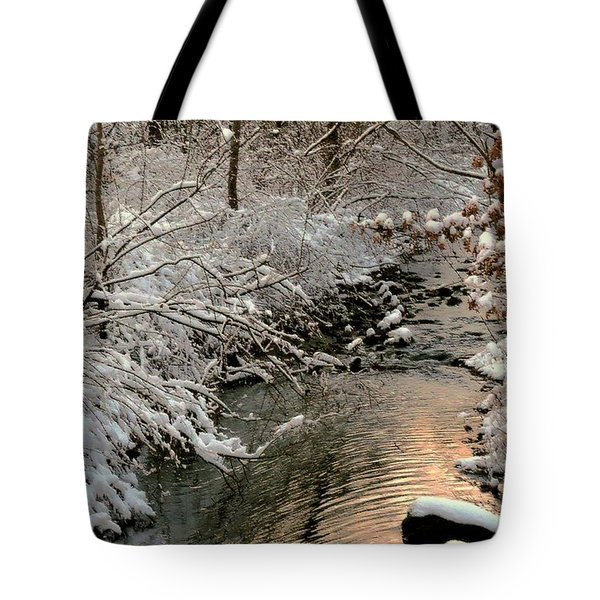 Silvered Shores Tote Bag