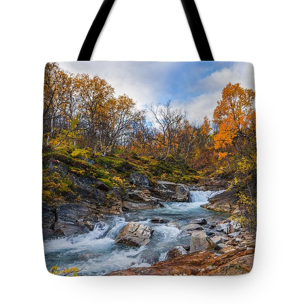 Tote Bag featuring the photograph Silverfallet by James Billings