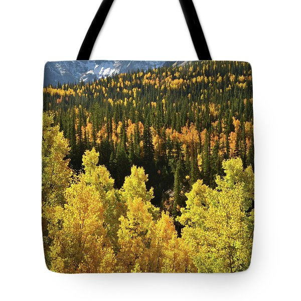 Tote Bag featuring the photograph Silverton Mountainscape by Ray Mathis