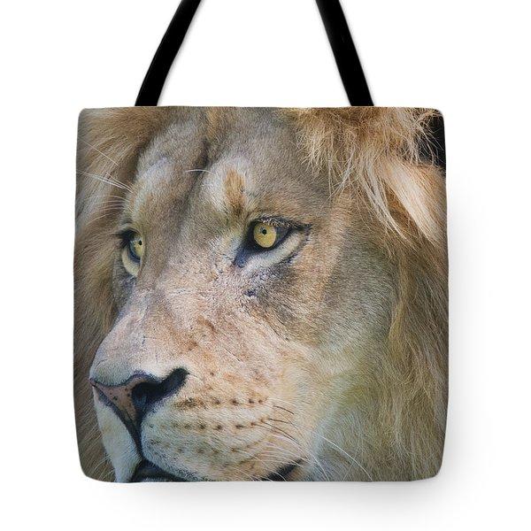 Simba 2 Tote Bag