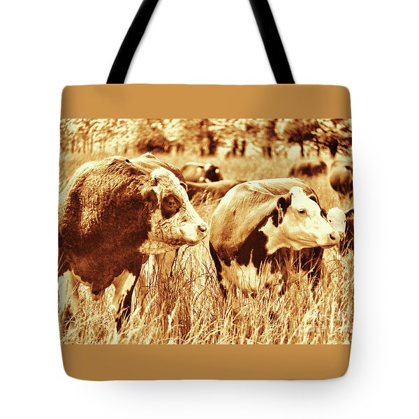 Simmental Bull 3 Tote Bag