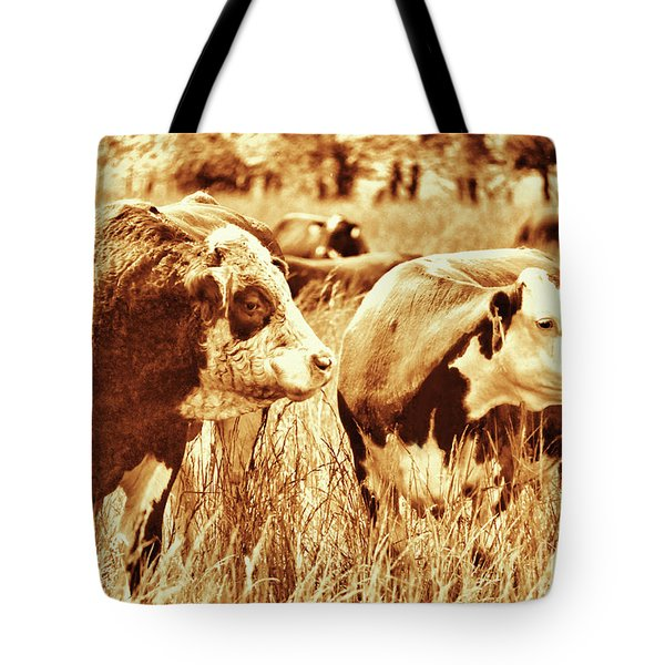 Tote Bag featuring the photograph Simmental Bull 3 by Larry Campbell