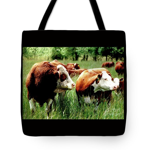 Tote Bag featuring the photograph Simmental Bull And Hereford Cow by Larry Campbell