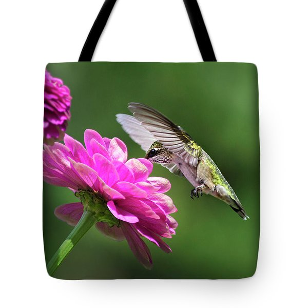 Tote Bag featuring the photograph Simple Pleasure Hummingbird by Christina Rollo