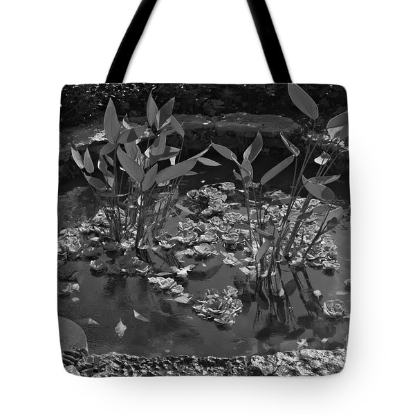 Tote Bag featuring the photograph Simplicity by Cendrine Marrouat