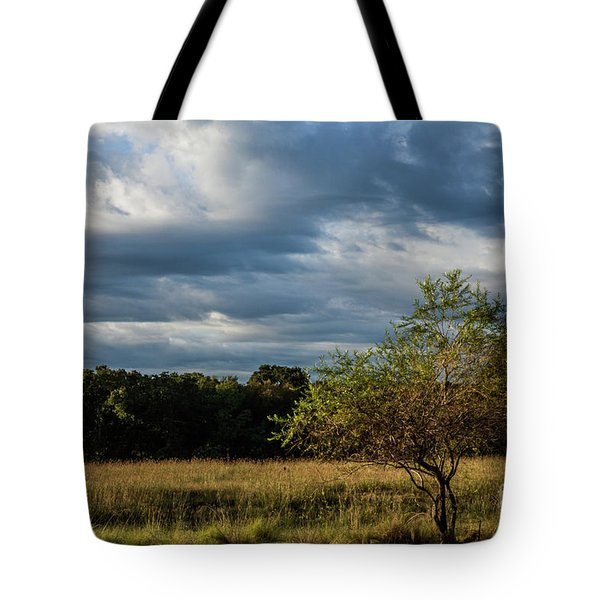 Tote Bag featuring the photograph Simplicity by Iris Greenwell