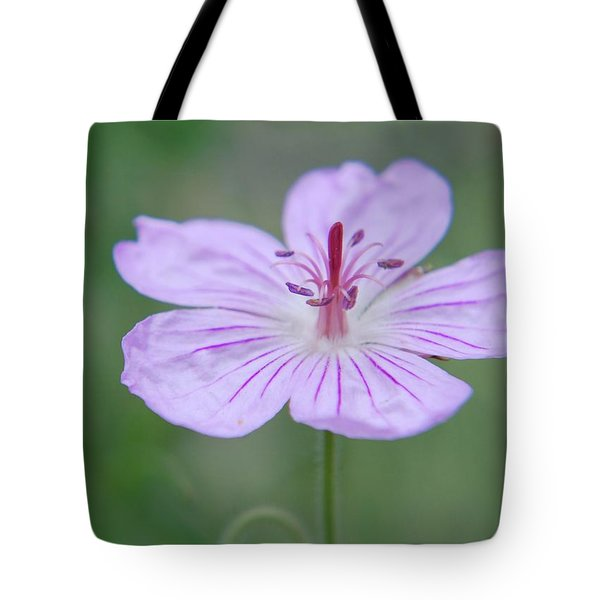 Tote Bag featuring the photograph Simplicity Of A Flower by Amee Cave