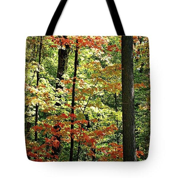 Simply Autumn Tote Bag by Joan  Minchak