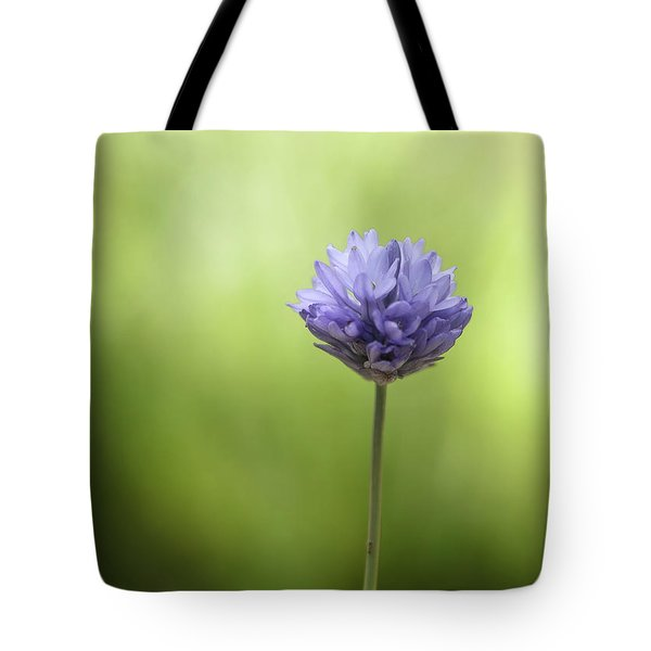Simply Blue Tote Bag