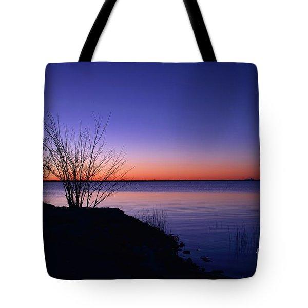 Simply Gentle Blue Tote Bag