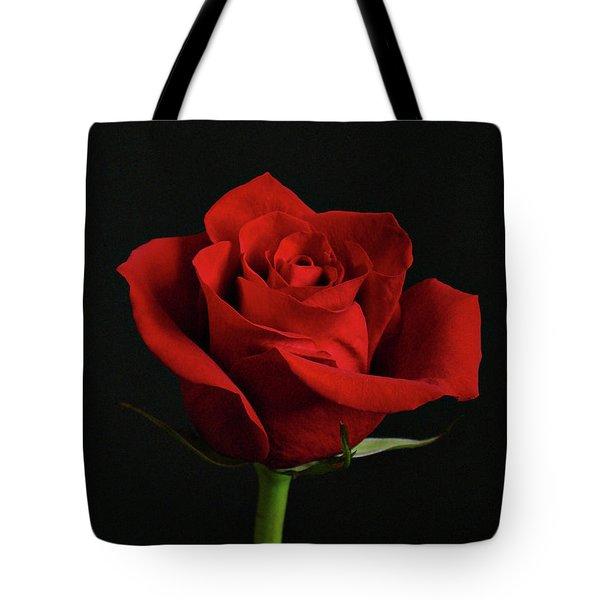 Simply Red Rose Tote Bag by Sandy Keeton