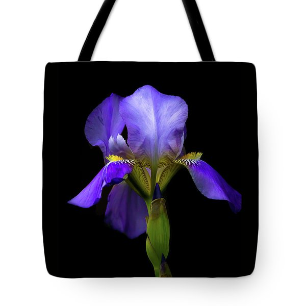 Simply Stunning Tote Bag by Penny Meyers
