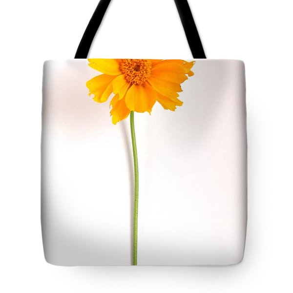 Simply Sunny Tote Bag