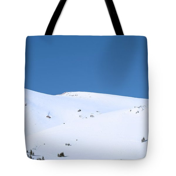 Tote Bag featuring the photograph Simply Winter by Juli Scalzi